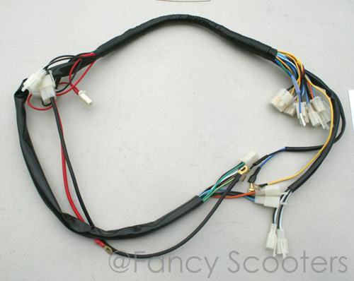 Fancy Scooter: Gas Scooters and Electric Scooters Retail and Wholesale | X1 Pocket Bike Wiring Harness |  | Fancy Scooter: Gas Scooters and Electric Scooters Retail and Wholesale